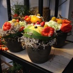 Herbstliche Impressionen UNVERBLüMT