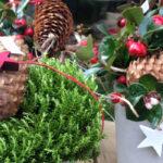 unverblümte Weihnachtsstimmung